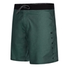 Picture of Brand Boardshorts Cypress Green
